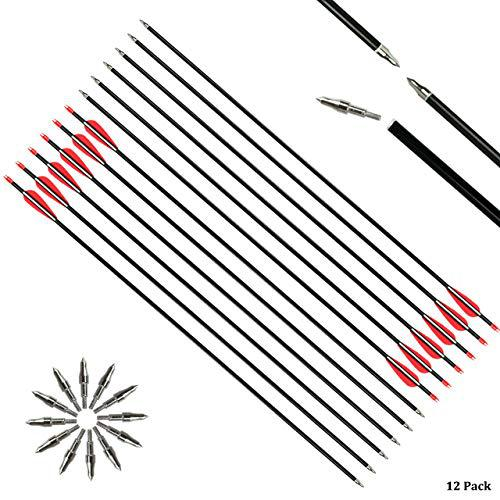 "SinoArt 31"" Aluminum Arrows Target&Hunting Practice Archery Arrows with 3 Inch Vane Screw-in Field Points Replaceable Tips Adjustable Nocks for Recurve Compound Bow Longbow Hunting?>"