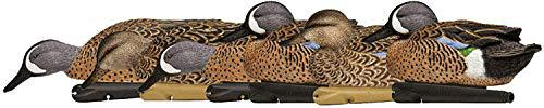 Avian-X 8080 Topflight Blue Wing Teal Duck Decoys, 6 Pack?>