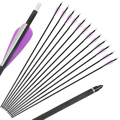 IRQ Fletched Carbon Arrows with Replaceable Tips for Recurve and Compound Bow 12-Pack?>