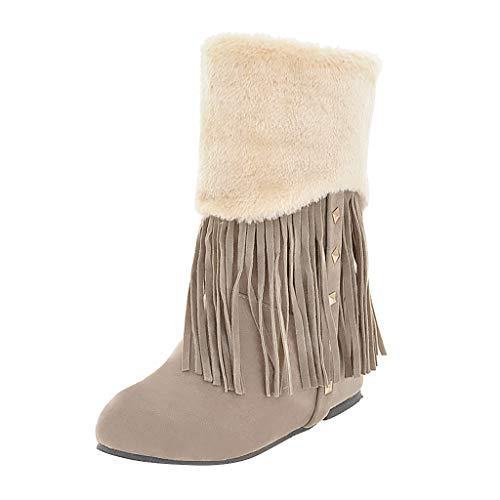 Jesper Women's Fashion Warm Mid-Calf Booties Outdoor Suede Winter Hidden Wedge Faux Fur Tassel Snow Boots with Studded?>