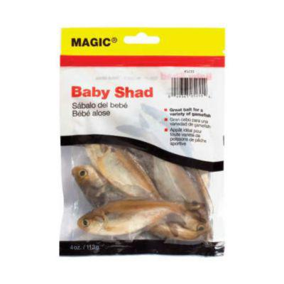 Magic Preserved Shads Bait?>