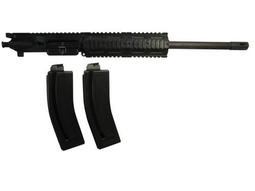 Chiappa M4-22 Upper Receiver with 2 Mag 10 Shots?>