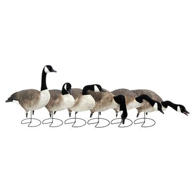 GHG Decoys Flexible Full Body Honkers, Harvester, 6 Pk?>
