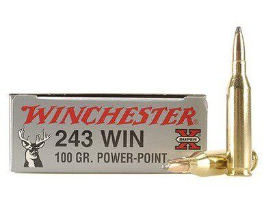 243 Win 100gr Power Point, Winchester, 1 Box of 20?>