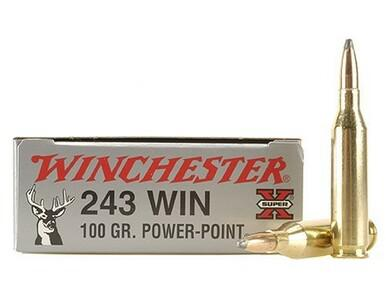 243 Win 100gr Power Point, Winchester, Box of 20?>